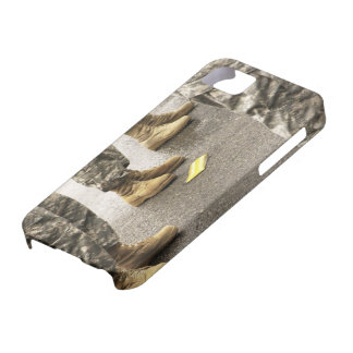 USA, Washington State, Issaquah, Salmon Day's iPhone 5 Cover