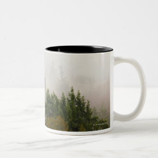 USA, Washington State, Kitsap County, Seabeck, 2 Two-Tone Coffee Mug