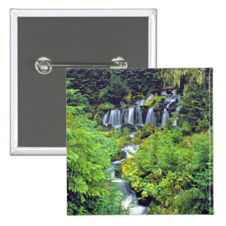 USA, Washington State, Mt Adams Wilderness. Twin 15 Cm Square Badge