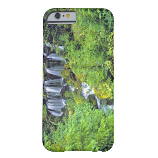 USA, Washington State, Mt Adams Wilderness. Twin Barely There iPhone 6 Case