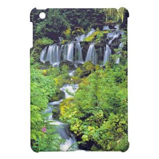 USA, Washington State, Mt Adams Wilderness. Twin iPad Mini Cases