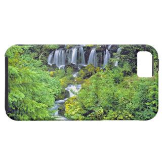 USA, Washington State, Mt Adams Wilderness. Twin iPhone 5 Case
