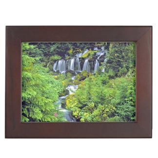 USA, Washington State, Mt Adams Wilderness. Twin Keepsake Box