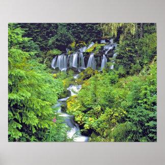 USA, Washington State, Mt Adams Wilderness. Twin Poster