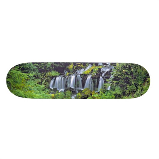 USA, Washington State, Mt Adams Wilderness. Twin Skateboards