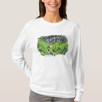 USA, Washington State, Mt Adams Wilderness. Twin T-Shirt