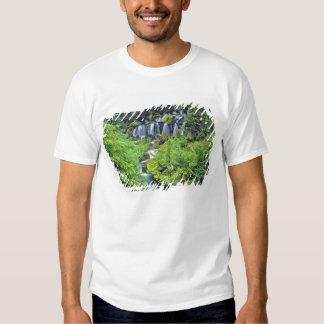 USA, Washington State, Mt Adams Wilderness. Twin T-shirts