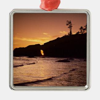 USA, Washington State, Olympic National Park. 2 Christmas Ornament