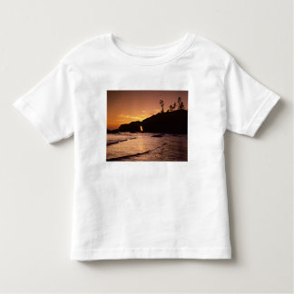 USA, Washington State, Olympic National Park. 2 Toddler T-Shirt
