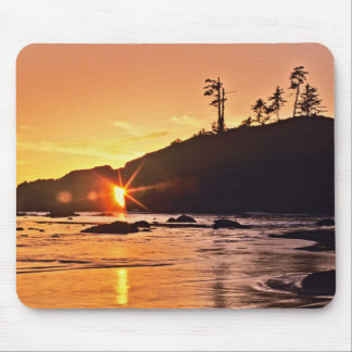 USA, Washington State, Olympic National Park. 3 Mouse Mat