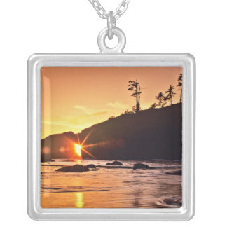 USA, Washington State, Olympic National Park. 3 Silver Plated Necklace