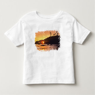 USA, Washington State, Olympic National Park. 3 Toddler T-Shirt