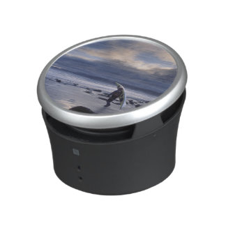 USA, Washington State, Olympic National Park. Bluetooth Speaker