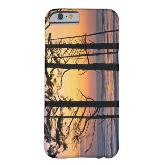 USA, Washington State, Olympic NP. Delicate Barely There iPhone 6 Case