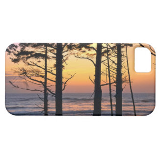 USA, Washington State, Olympic NP. Delicate iPhone 5 Cover