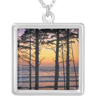 USA, Washington State, Olympic NP. Delicate Silver Plated Necklace