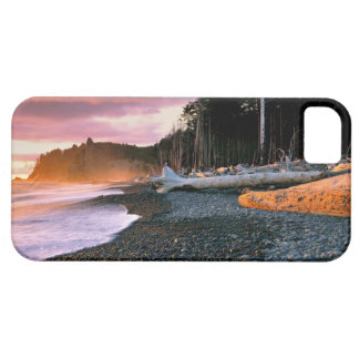 USA, Washington State, Olympic NP. Waves lap the iPhone 5 Case