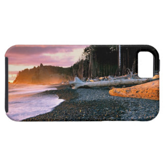 USA, Washington State, Olympic NP. Waves lap the iPhone 5 Covers