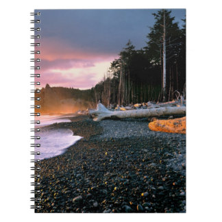 USA, Washington State, Olympic NP. Waves lap the Notebook