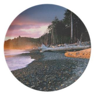 USA, Washington State, Olympic NP. Waves lap the Plate