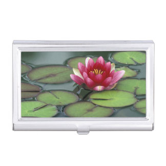USA, Washington State, Seattle. Water lily and Business Card Holder