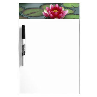 USA, Washington State, Seattle. Water lily and Dry Erase Board