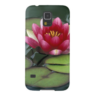 USA, Washington State, Seattle. Water lily and Galaxy S5 Cover
