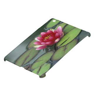 USA, Washington State, Seattle. Water lily and iPad Mini Cover