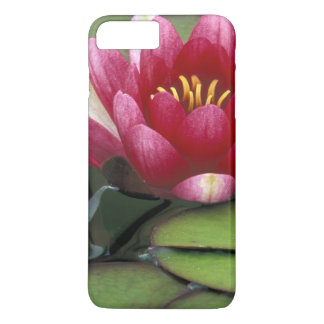 USA, Washington State, Seattle. Water lily and iPhone 8 Plus/7 Plus Case