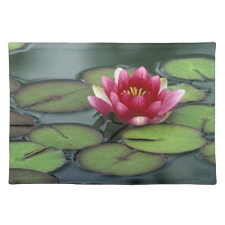 USA, Washington State, Seattle. Water lily and Placemat