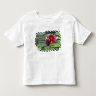 USA, Washington State, Seattle. Water lily and Toddler T-Shirt