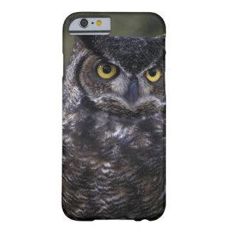 USA, Washington State, Seattle, Woodland Park Barely There iPhone 6 Case