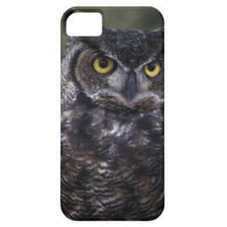 USA, Washington State, Seattle, Woodland Park Case For The iPhone 5
