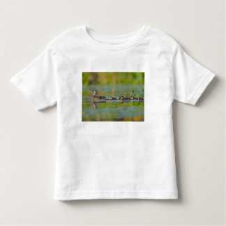 USA, Washington State, Wood Duck,female, Toddler T-Shirt
