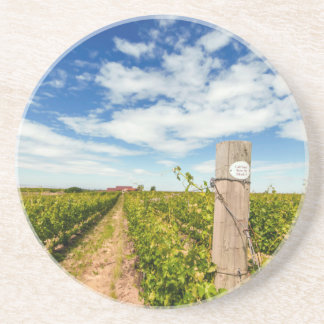 USA, Washington, Walla Walla. Cabernet Sauvignon Coaster