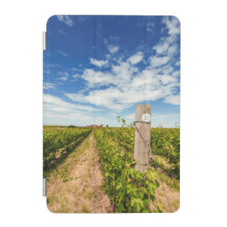 USA, Washington, Walla Walla. Cabernet Sauvignon iPad Mini Cover