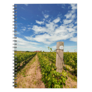 USA, Washington, Walla Walla. Cabernet Sauvignon Notebook