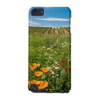 USA, Washington, Walla Walla. Wildflowers iPod Touch (5th Generation) Cases