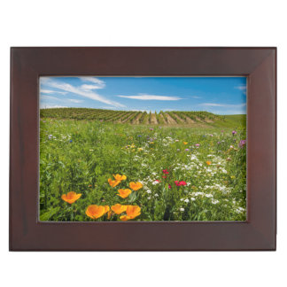 USA, Washington, Walla Walla. Wildflowers Keepsake Box