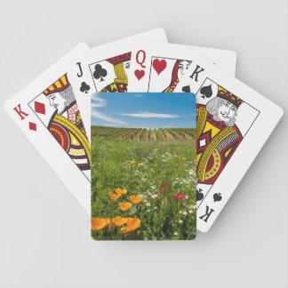 USA, Washington, Walla Walla. Wildflowers Playing Cards