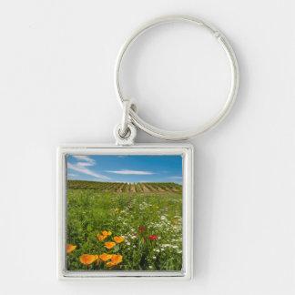 USA, Washington, Walla Walla. Wildflowers Silver-Colored Square Key Ring