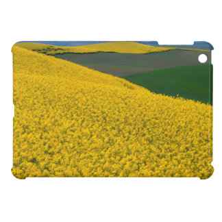 USA, Washington, Whitman County, Palouse, Canola iPad Mini Cases