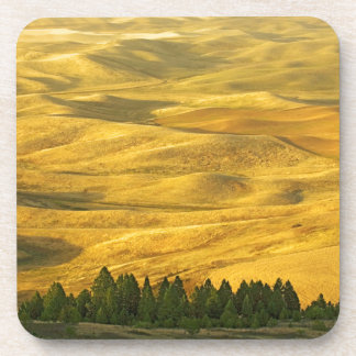USA, Washington, Whitman County, Palouse, Wheat Coaster