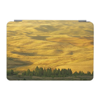USA, Washington, Whitman County, Palouse, Wheat iPad Mini Cover