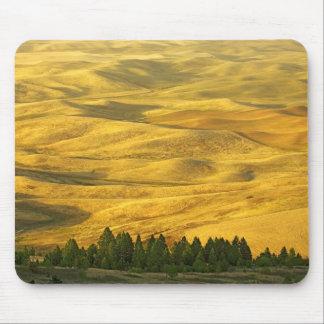 USA, Washington, Whitman County, Palouse, Wheat Mouse Mat