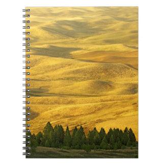 USA, Washington, Whitman County, Palouse, Wheat Notebook