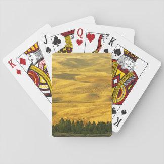 USA, Washington, Whitman County, Palouse, Wheat Playing Cards