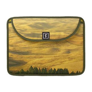USA, Washington, Whitman County, Palouse, Wheat Sleeve For MacBooks