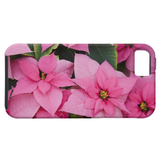 USA, Washington, Woodinville, Molbak's Nursery, 3 Tough iPhone 5 Case