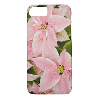 USA, Washington, Woodinville, Molbak's Nursery, 4 iPhone 8/7 Case